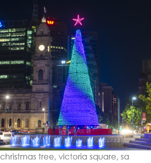 Christmas Tree Victoria Square Adelaide